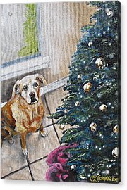 Yellow Lab Christmas Acrylic Print by Melissa Torres