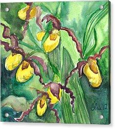 Yellow Ladies Slippers Acrylic Print by Christina Plichta