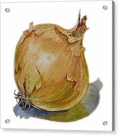 Yellow Onion Acrylic Print by Irina Sztukowski