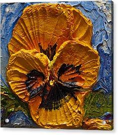 Yellow Pansy Acrylic Print by Paris Wyatt Llanso