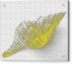 Yellow Seashell Acrylic Print by Carol Lynch