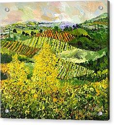 Yellow Trees Acrylic Print by Allan P Friedlander