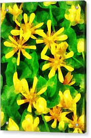 Yellow Wildflowers Acrylic Print by Susan Savad