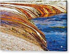 Yellowstone Earthtones Acrylic Print by Bill Gallagher