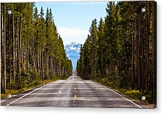 Yellowstone Open Road Acrylic Print by Adam Pender