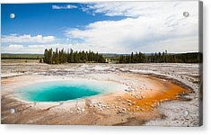 Yellowstone Prismatic Spring Acrylic Print by Adam Pender