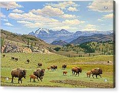 Yellowstone Spring Acrylic Print by Paul Krapf