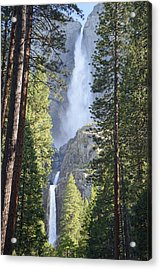 Yosemite Falls In Morning Splendor Acrylic Print by Bruce Gourley