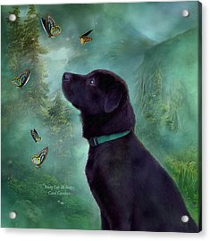 Young Lab And Buttys Acrylic Print by Carol Cavalaris