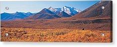 Yukon Territory Canada Acrylic Print by Panoramic Images