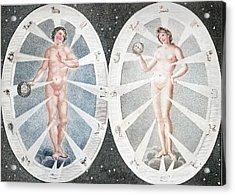 Zoadiac Adam And Eve Acrylic Print by Paul D Stewart