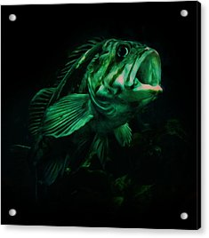 Green Fish Acrylic Print by Veronica Ventress
