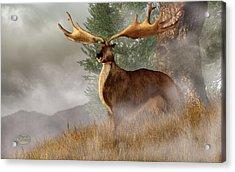Megaloceros Giganteus Acrylic Print by Daniel Eskridge