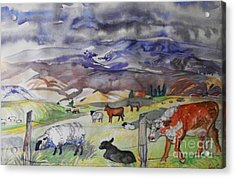 Mixed Farm Animals Graze In Field Acrylic Print by Annie Gibbons