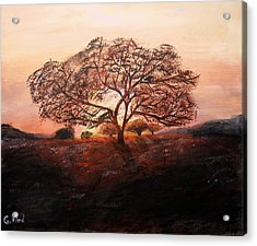 Red Tree Acrylic Print by Grigore Vlad