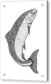 Salmon II Acrylic Print by Carol Lynne