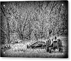 Tractor Days Acrylic Print by Michelle Frizzell-Thompson
