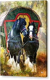 Travellers Acrylic Print by Trudi Simmonds