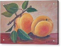 Apricot Acrylic Print by Ema Dolinar Lovsin