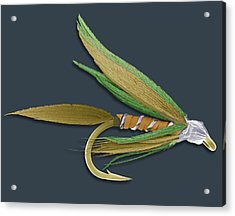 Barbed Fishing Fly, Sem Acrylic Print by Steve Gschmeissner