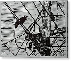 Bird On A Wire Acrylic Print by William Cauthern