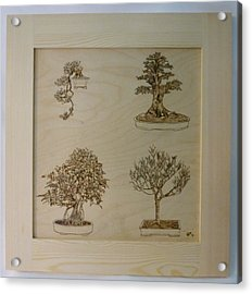 Bonsai Pyrographic Art Original Panel With Frame By Pigatopia Acrylic Print by Shannon Ivins