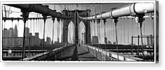 Brooklyn Bridge Acrylic Print by Peter Aitchison