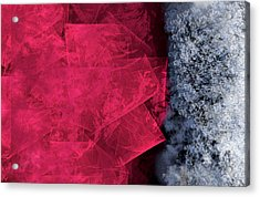 Christmas Frost Acrylic Print by Christopher Gaston