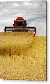 Combine Harvester, North Yorkshire Acrylic Print by John Short