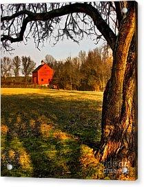 Country Life Acrylic Print by Susan Candelario