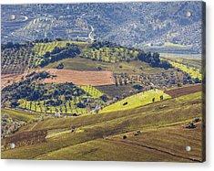 Farmland Near Casabermeja, Spain. Acrylic Print by Ken Welsh