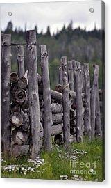 Fenced In  Acrylic Print by Juls Adams