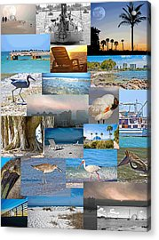 Florida Collage Acrylic Print by Betsy Knapp