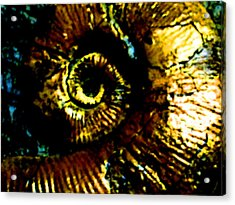 Fossil Acrylic Print by Howard Perry