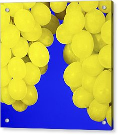 Grapes Acrylic Print by Johnny Greig