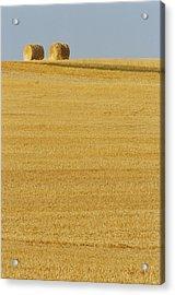 Hay Bales, Holland, Manitoba Acrylic Print by Mike Grandmailson