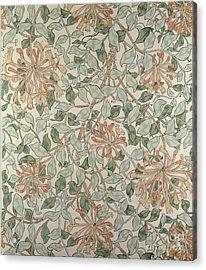 Honeysuckle Design Acrylic Print by William Morris