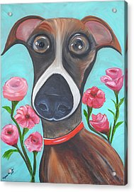 Hooper Icon For Shelter Dogs Acrylic Print by Melanie Wadman