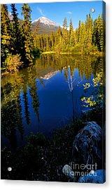 Jasper - Miette River Acrylic Print by Terry Elniski
