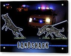 Landshark Acrylic Print by Rose Borisow