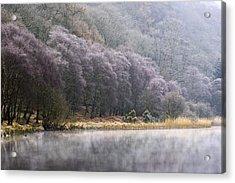 Lower Lake, Glendalough, County Acrylic Print by Peter McCabe