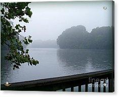 Morning Mist Acrylic Print by Gladys Steele