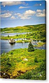 Newfoundland Landscape Acrylic Print by Elena Elisseeva