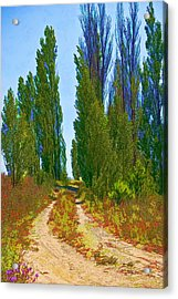 Paradise Road Acrylic Print by Randall Nyhof
