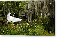 Peaceful Pond Acrylic Print by Cecil Fuselier