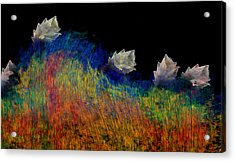 Pure Acrylic Print by Christopher Gaston
