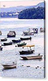River Boats On Danube Acrylic Print by Elena Elisseeva