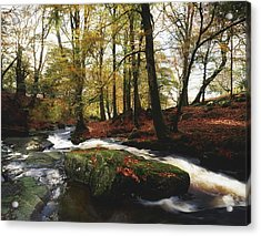 Sally Gap, County Wicklow, Ireland Acrylic Print by The Irish Image Collection