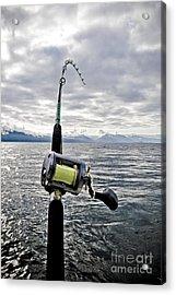 Salmon Fishing Rod Acrylic Print by Darcy Michaelchuk