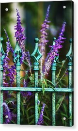 Secret Garden Acrylic Print by Brenda Bryant